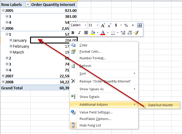 SSAS Reporting Action with Date Parameters | MikeDavisSQL